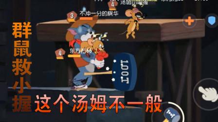 猫和老鼠 小握东北话解说:群鼠救小握 这个汤姆不一般