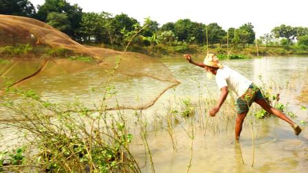 70岁老爷爷野外撒一网,看看他捕获了多少鱼?