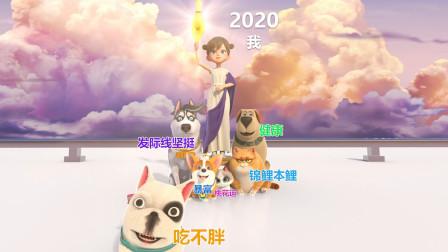 飛狗MOCO | 2020年我的祝福都在這了
