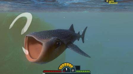 海底大猎杀:你见过这条鱼吗? 嘴真的超级大