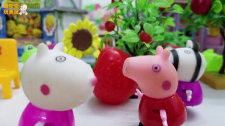 《小猪佩奇》小故事,苏西种的草莓,哇,这草莓也太大了吧!