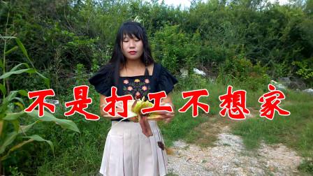 春节快到了!一首《不是打工不想家》听完这首歌,有谁不想家的?