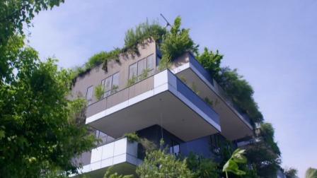 一个非比寻常的计划正在展开,全世界第一座城市森林即将在这里诞生 我们的未来时·畅想中国 20200109 快剪  0103162949