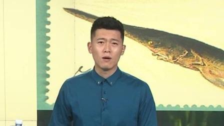长江白鲟被宣布灭绝 呼吁保护珍稀动物 每日新闻报 20200103 高清版