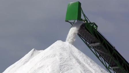 如果世界上没有了盐,会怎样呢?