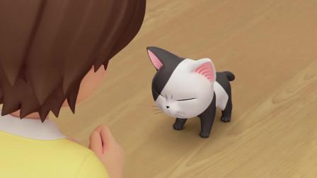 甜甜私房猫:可奇,你要听话哦