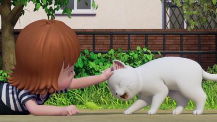 甜甜私房猫:小白猫,你要听话哦