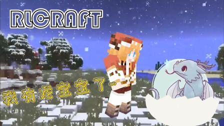 我 有 龙 宝宝 了!橙子母爱大爆发 我的世界RLcraft 11