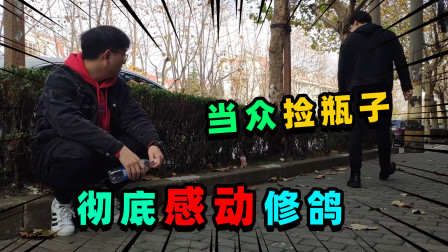居哥哥:为帮S鸽儿做鸟巢,居哥开始大街上捡瓶子!最终感动修鸽