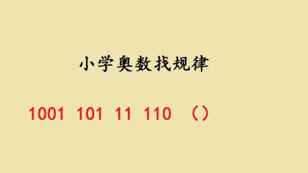 小学奥数找规律:1001,101,11,110,有难度!