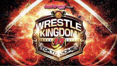 NJPW Wrestle Kingdom 14 Day 1