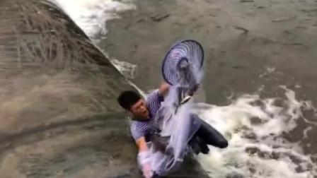 水库放水了,小伙子站在河里撒网捕捉清道夫,技术太牛了!