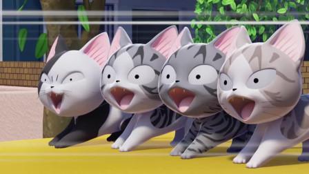 甜甜私房猫:哇,好刺激呀!