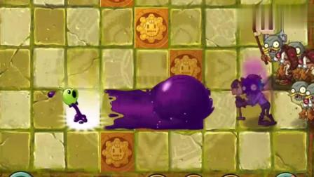 植物大战僵尸:植物们智斗小僵尸