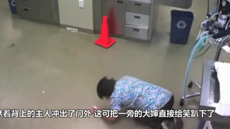 主人带狗子到医院,针还没打,狗驮着主人跑了,旁边的阿姨直接笑趴了