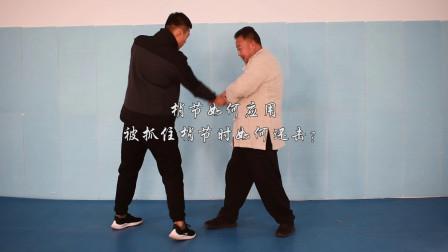 太极拳梢节运动,打击对方整体,庞恒国师父谈太极
