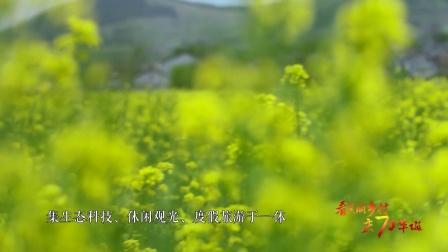 看美丽乡村 庆70华诞丨江苏省徐州市铜山区汉王镇汉王村
