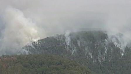 澳大利亚林火肆虐 灾害已致24人死亡 将设新机构救灾 首都晚间报道 20200107 1080