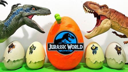 太棒了!一起看看恐龙蛋里都有哪些宝宝吧?趣味玩具故事