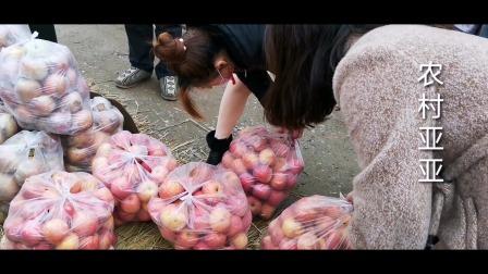 货拉拉司机改行第7天,卖了16袋苹果,3袋橙子,你猜挣了多少钱