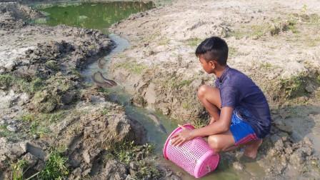 农村男孩野外抓鱼,一个垃圾篓摆放几分钟,就能收获好多鱼,爽!