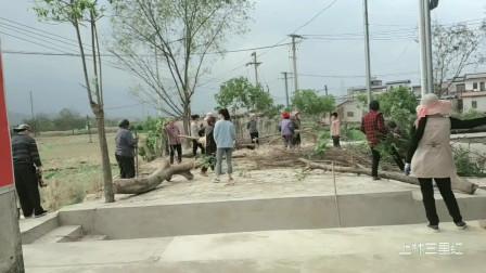 广西上林 人心齐泰山移 云陆庄为了迎接柳工篮球比赛全村义务劳动