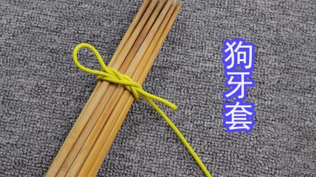 """分享一种非常古老的快速捆绑绳结""""狗牙套"""",在生活中被广泛使用"""