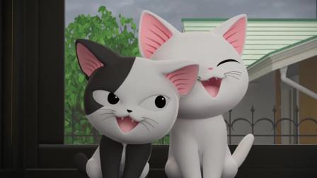 《甜甜私房猫》可奇很开心呀