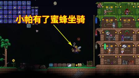 游戏真好玩,泰拉瑞亚15:小帕干掉蜂王后,获得一个蜜蜂坐骑