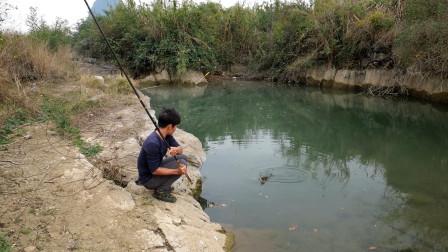 小伙深潭钓鱼,野货疯狂上钩,第一竿就上条大货