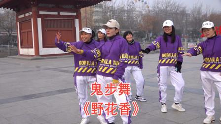 劲爆热歌广场舞《野花香》,舞步动感时尚,跳出美丽跳出健康