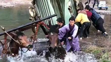 马车不小心掉进水里,真是马失前蹄的后果,辛苦