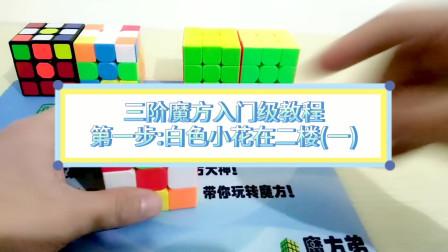 三阶魔方还原,三阶魔方入门级教程第一步:白色小花在二楼(第一讲)
