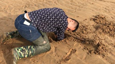 挖蛏王要的就是速度,小斗手都磨出泡了,还挖了很多西施贝