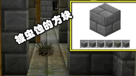 我的世界:老玩家都不一定见过的方块,同时也被官方嘲讽没用!