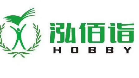 山西省大同市城区泓佰诣教育培训学校宣传片