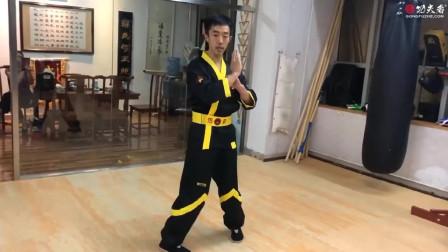 咏春拳新编竞赛表演套路(上)—1~4式动作分解