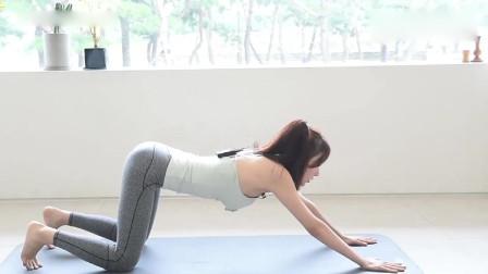瑜伽:猫式伸展缓解腰部酸胀