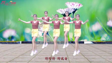 动感DJ广场舞《野花香》,美女性感火辣,舞姿新颖好看