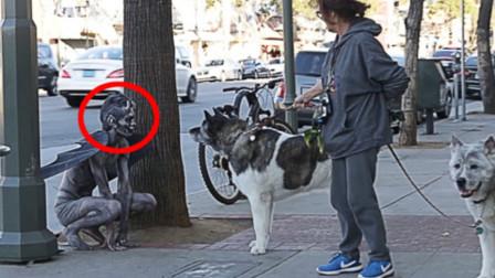 """一只""""恶魔""""惊现街头,不料一只憨狗傻傻靠近,接下来憋住别笑"""