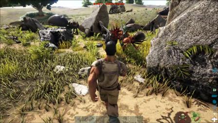 方舟生存进化:小天想驯服一只恐龙却被两条迅猛龙联手秒杀