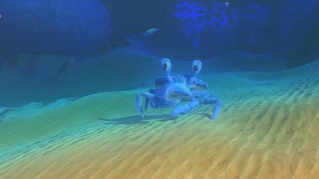 海底大猎杀:原来螃蟹横着走速度这么快