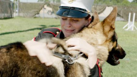 功勋军犬退役后将被安乐死,女孩经过不懈努力成功收养它,泪奔了!