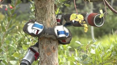 又一种高科技监视神器问世,能爬树、能钻洞,堪称无孔不入
