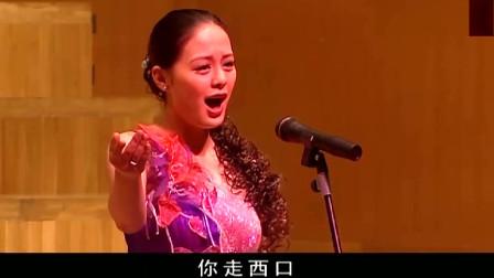 血色浪漫:秦岭重登舞台,人在唱歌心却在想钟跃民