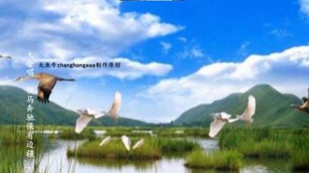 zhanghongaaa精选大合唱骏马奔驰保连疆原创