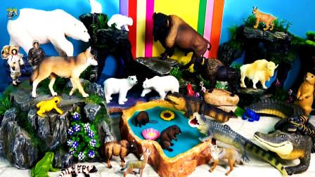 少儿益智玩具游戏,野生动物玩具,爬行动物,蜥蜴鳄鱼,野狼,北极熊,山羊黄牛,儿童玩具亲子互动,悠悠玩具城