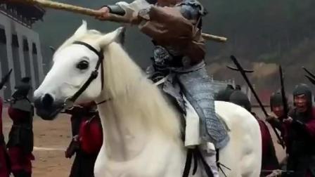 赵子龙单枪匹马突重围,这匹马是亮点