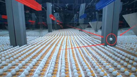小伙将10万个捕鼠夹放在一起,扔个乒乓球会怎样?场面失控!