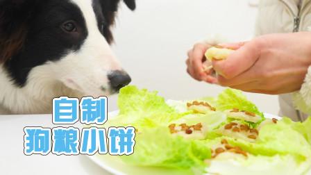 狗狗零食必备,主人自制零食狗粮小饼,狗狗高兴坏了